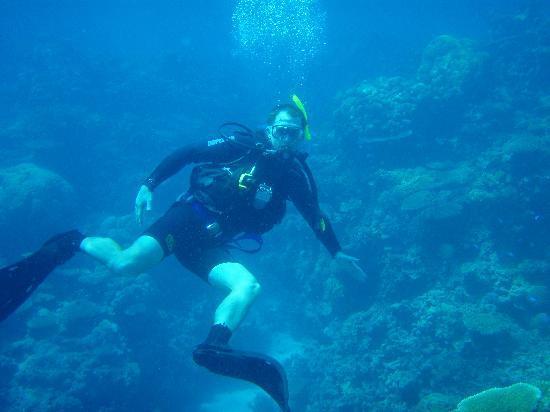 Divers Den: Saxon Reef August 2009