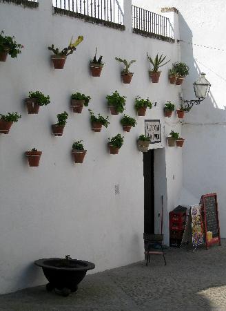 Real de Veas: a bar typico up the street