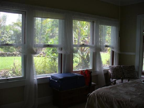 The Old Hawaiian B&B : Windows view