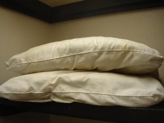 Knights Inn Somerset: Dirty Pillows with No Pillow Cases