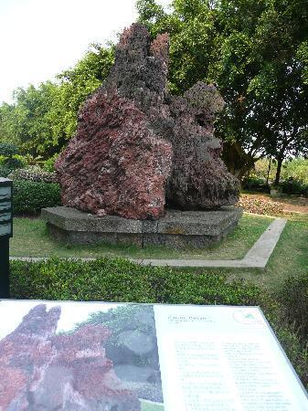 Hairui's Tomb: その他の写真