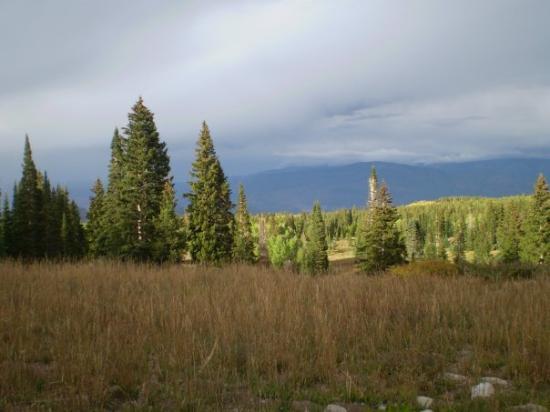 West Elk Loop Scenic Byway Image