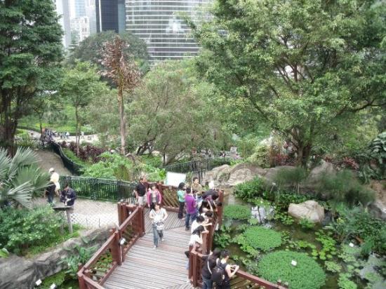 Bird Aviary Picture Of Garden Yuanpu Street Hong