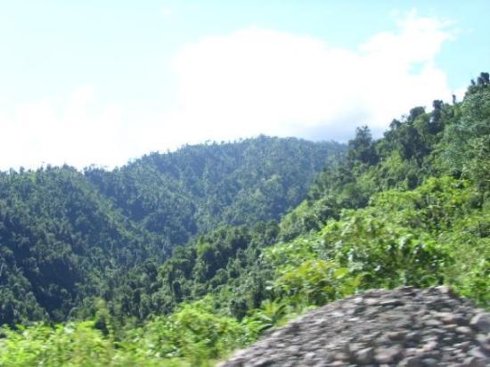 Camino a tafi del Valle