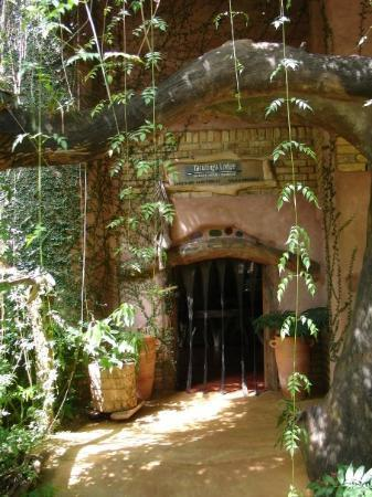 Yacutinga Lodge en la Selva Misionera.