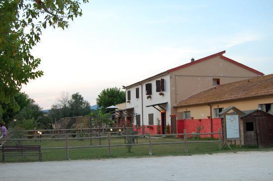 Marcelli di Numana, Italia: Agriturismo