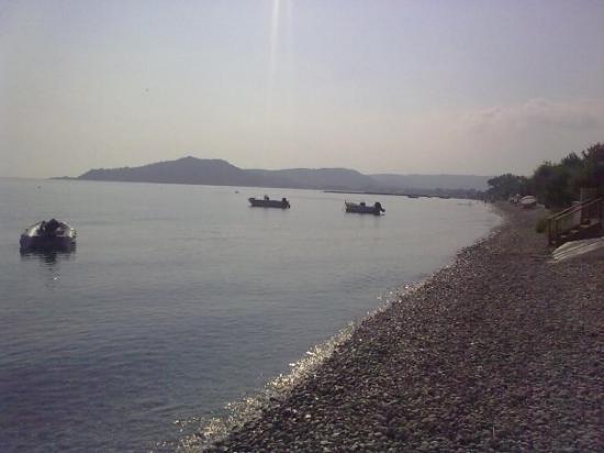 Pebble beach ALYKES