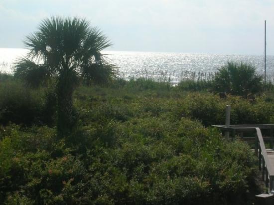 Seawatch at the Island Club: View of Atlantic ocean