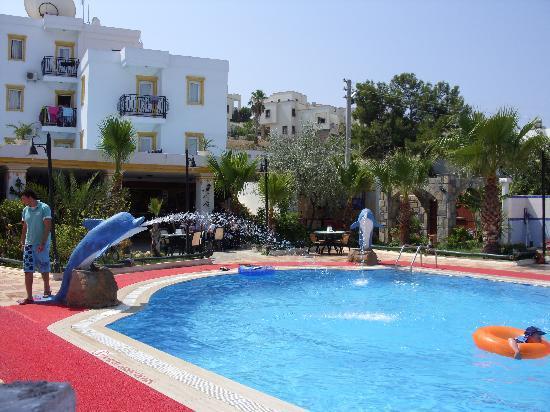 Club Bozok Apartments : pool