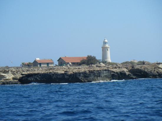 Dolphin Boat Safari: Lighthouse