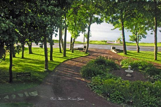 Harbour Grace, Canada: Front garden, morning