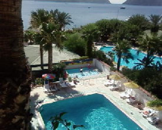 Photo of Amos Marmaris