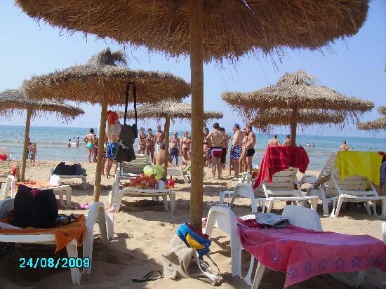 Baia del Sole Villaggio: La Spiaggia