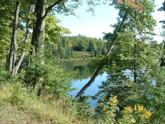 Halfway Lake Cottages: View of Halfway Lake
