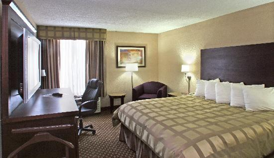 Quality Inn & Suites-Capital District: King Room