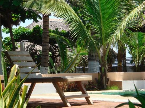 Hotel Restaurante Dulce y Salado: views from my hammock