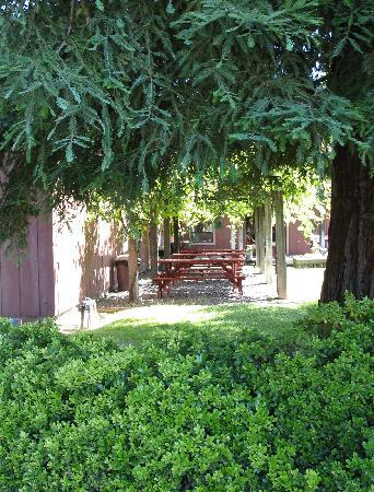 Sausal Winery Picnic Tables
