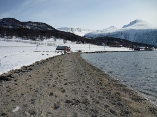 Attraction Review g d Reviews The North Way Tromso Troms Northern Norway.