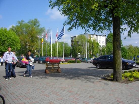 Zdjęcie Iława