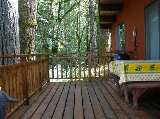 The Wayfarer Resort: Another view of deck