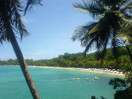 Sosúa, República Dominicana: Playa Sosua Diesen Ausblick erhält man von einem kleinem Restaurant in dem Ort Charamicos.