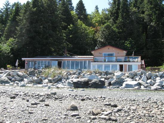 Copes' Islander Oceanfront B&B : View from ocean (Low tide)