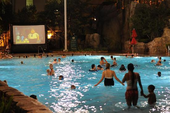 movie night at the main pool picture of disneys