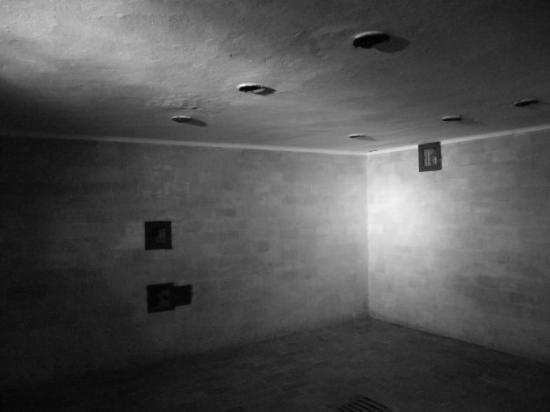 chambre gaz douche photo de dachau haute bavi re tripadvisor. Black Bedroom Furniture Sets. Home Design Ideas