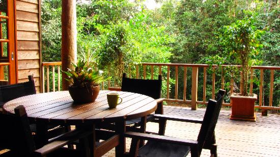 Rivers Edge Rainforest Retreat: Coolara - Morning cuppa on the deck