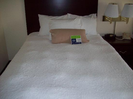 Hampton Inn Frankfort: Close up of one of the beds in the room