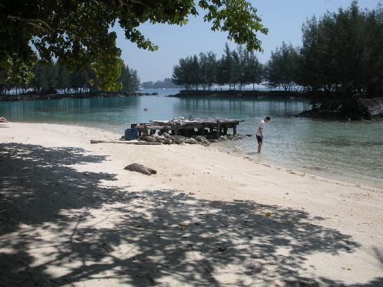 Alam Kotok Island Resort: What a paradise!