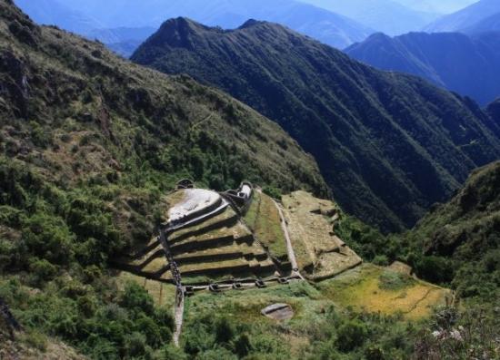 Puyapatamarca: Inca Trail Puyupatamarca ruins