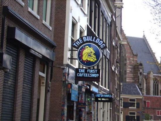 Coffee shop foto di the bulldog amsterdam amsterdam for Bulldog hotel amsterdam