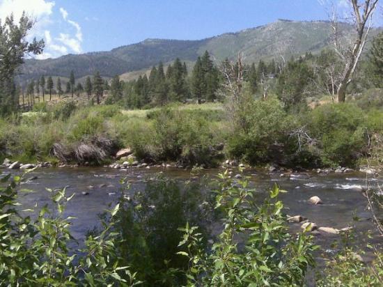 Truckee River Walk : Truckee River, Reno Nevada