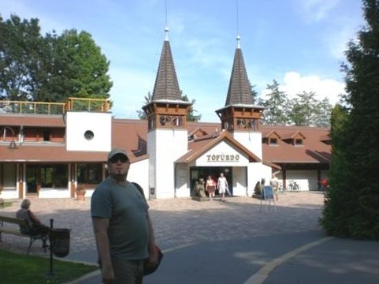 Thermal Lake of Hévíz: Schwefelbad Heviz