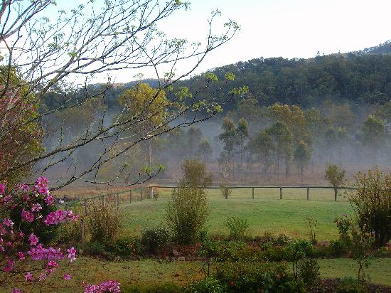 Beaudesert, Australië: view from the homestead - fog in the morning