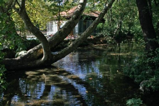 Giardini pubblici indro montanelli milano aggiornato - Ufficio parchi e giardini milano ...