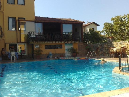 Poppy Apartments: always had room to swim!