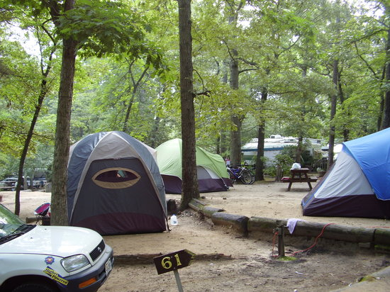 Big Oaks Family Campground: These sites were beside us