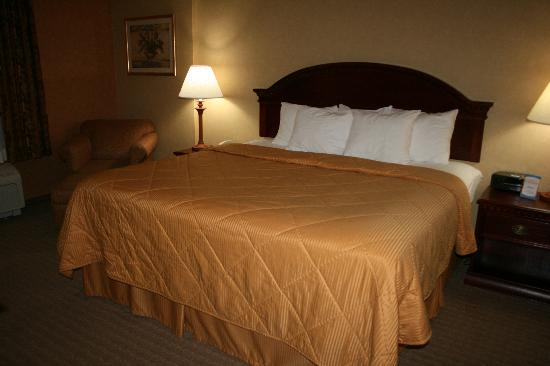 Comfort Inn Cheektowaga: King size bed