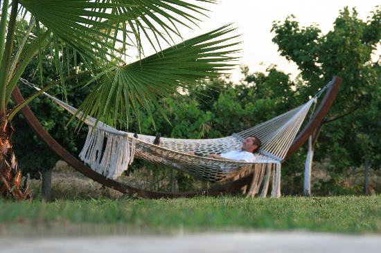 Hotel Grenadine Lodge: relaxing