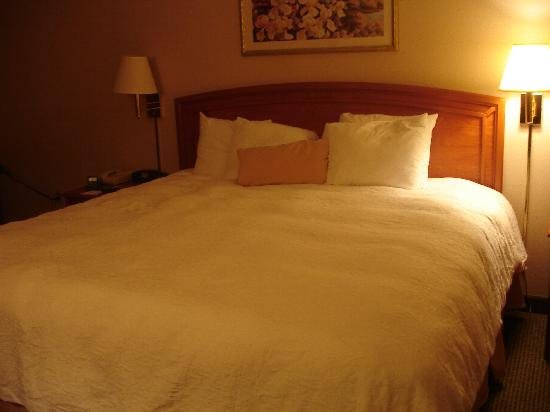 Hampton Inn Champaign/Urbana: King Bed