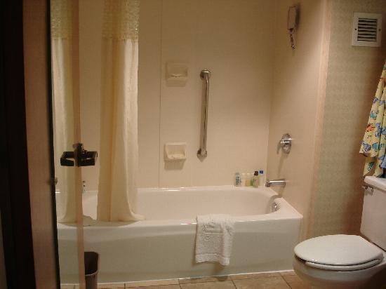 Hampton Inn Champaign/Urbana: bathroom