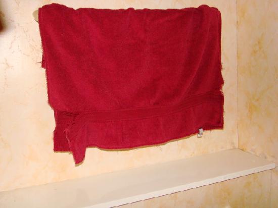 Wellington Guest House : Towel!