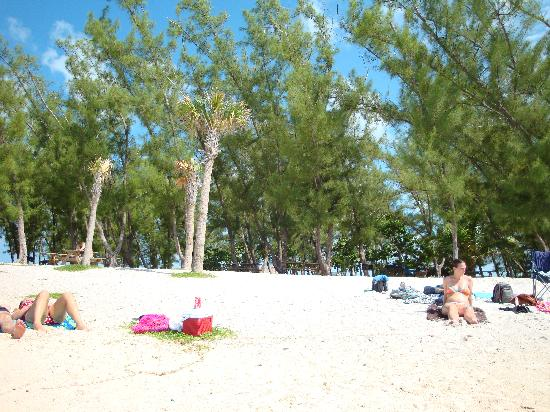 Orchid Key Inn: The beach at Ft. Zachary - must see and visit!