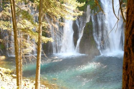 McArthur-Burney Falls Memorial State Park: Burney Falls, near Redding, CA