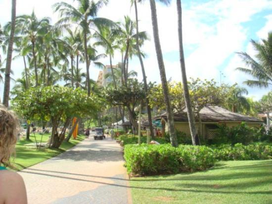 Kauai, HI: Nawilili Park