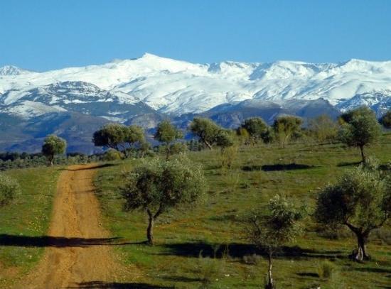 Sierra Nevada, le 07/03/2009.
