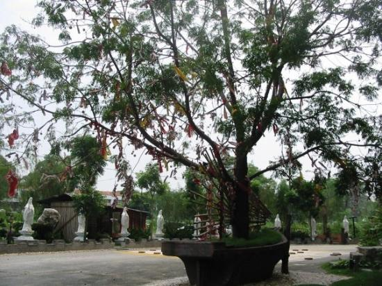 Ipoh, Malaisie : Three of the Wishes
