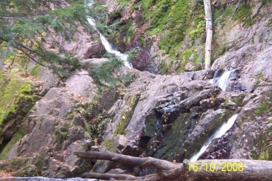 Morgan falls the waterfall at st peter 39 s dome for Morgan falls